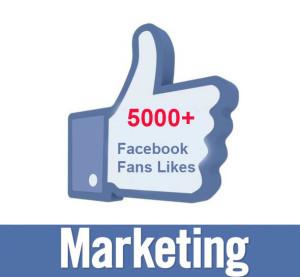 Fani Facebook din Romania